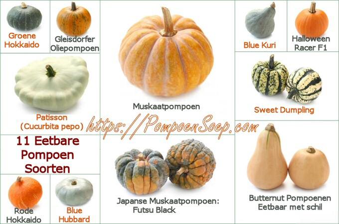 11 Eetbare soorten pompoen